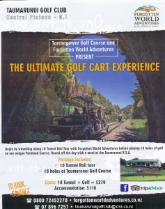 golf cart experience